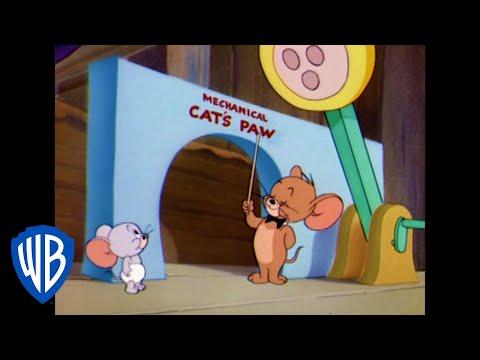 Tom et Jerry en Français | La souris scolarisée à domicile | WB Kids