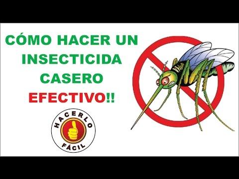 C mo hacer un insecticida casero efectivo hacerlo f cil for Cambiar empaque regadera