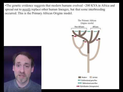 OL 12 Human migration part 2
