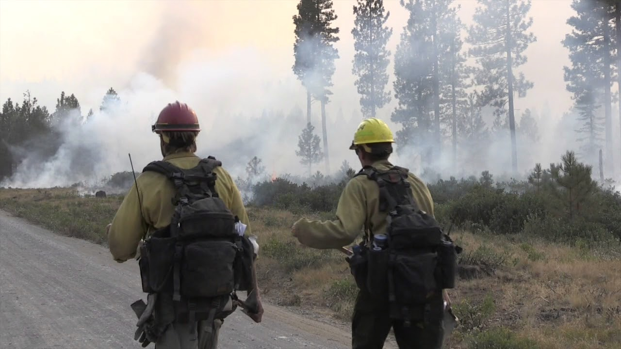 Milli Fire: Fuels Reduction Program - Before the Fire ...