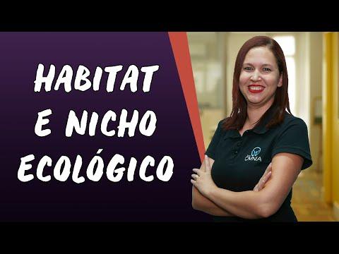 Habitat e Nicho Ecológico - Brasil Escola