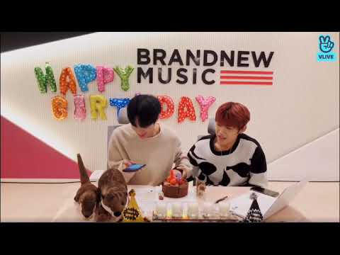 190129 Daehwi & Woojin VLIVE - 'Candle' Release