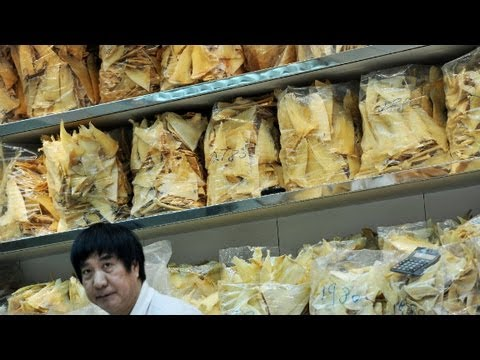 China: Shark Fin Soup Off The Menu