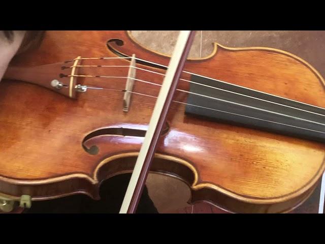 Ifstrings Master Build deluxe Wood #365 Guarneri del Gesu 1743