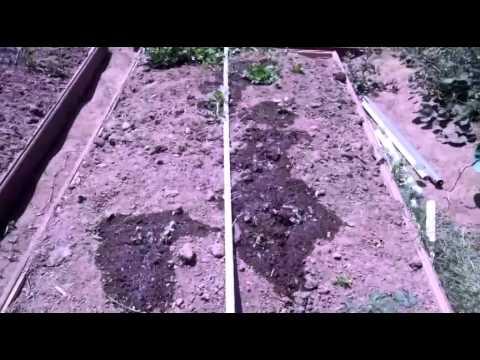 Raspberry Pi Solar Powered Automatic Garden