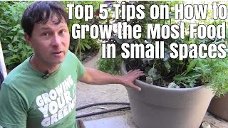 Top 5 Tips on How to Grow the Most Food in Small Space Gardens