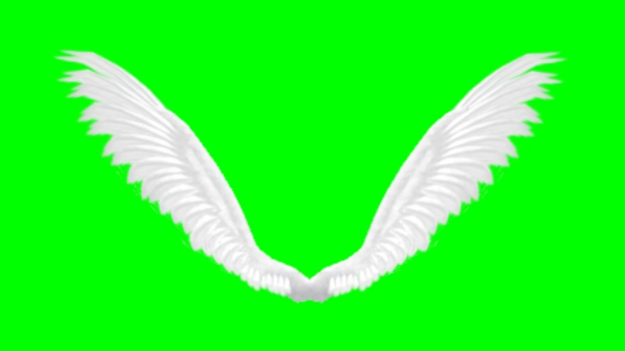 Animated Angel Wings Green Screen