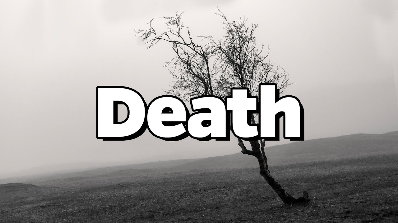 What Caused The Mandela Effect? - Quantum Immortality