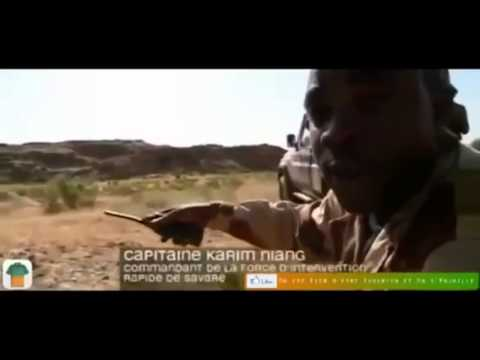 Very Poor Mali army, military training Presented by WSAB