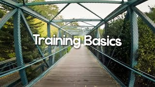 Basic Training Essentials - Explained by a Category 1