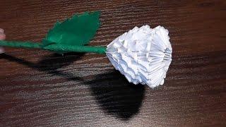 Модульное оригами белая роза (цветок) мк