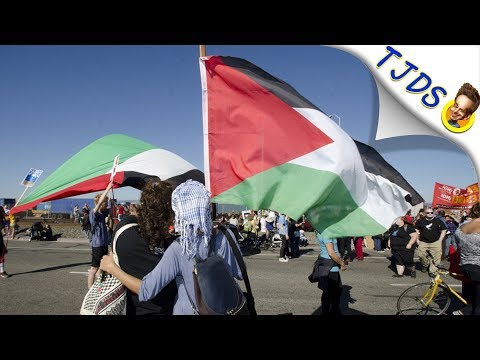 BDS Support Explained By Jewish Scholar w/Norman Finkelstein