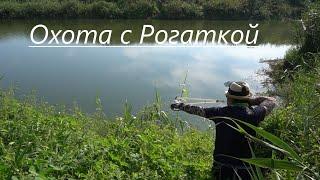 Сазан Охота с рогаткой на рыбу