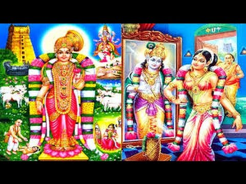 Dec 31 2015 4:30PM: Shrikrishna S Vocal, 6PM: Srivatsan/Ajay/Keshavan Trio Violin