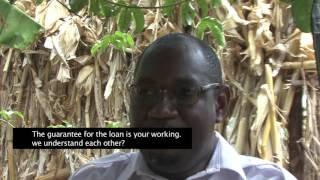 HIVOS FINANCING SMALL SCALE FARMERS IN ZAMBIA