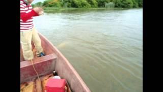 Sabalito en rio Coatzacoalcos!