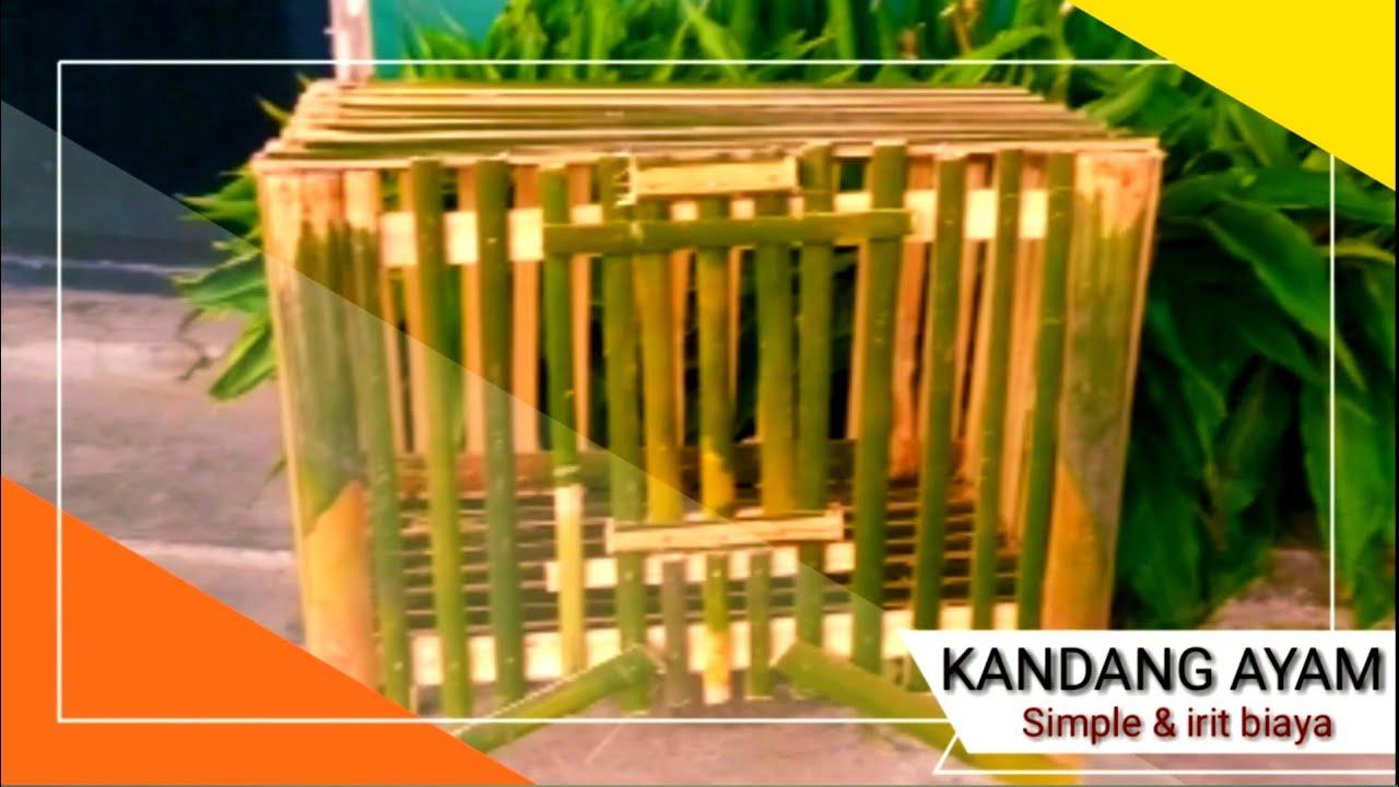 Cara Membuat Kandang Ayam dari bambu, sederhana dan irit ...
