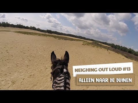 ALLEEN NAAR DE DUINEN - NEIGHING OUT LOUD #13 - Dreaming Out Loud