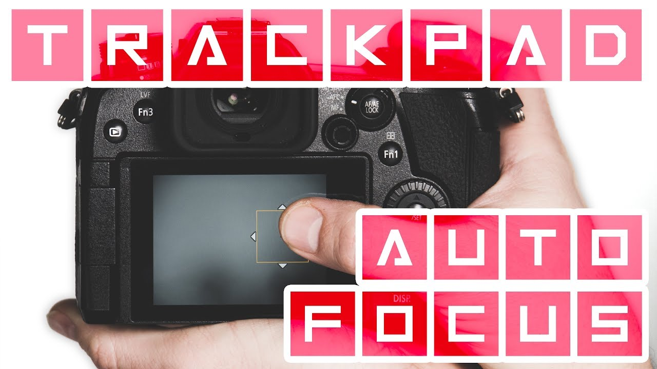 Setting Up Touch Screen Autofocus on LUMIX Cameras ► Helpful Tool or Too  Much Trouble?