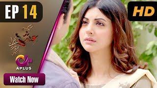 Kyunke Ishq Baraye Farokht Nahi - Episode 14   Aplus Dramas   Junaid Khan, Moomal   Pakistani Drama