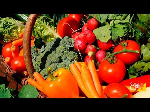 Curso Processamento Mínimo de Frutos e Hortaliças