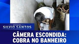 Câmera Escondida (18/12/16) - Cobra no Banheiro