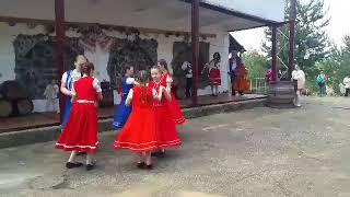 На Виноградівщині стартує винний фестиваль «Угочанська лоза» - ч. 1