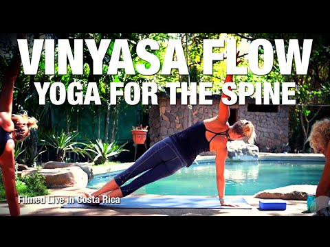 Yoga Class for Your Spine & Back - Five Parks Yoga