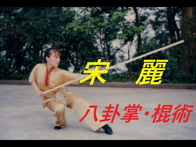 宋麗 八卦掌 棍術 TV 1992年