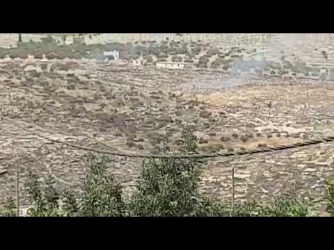 צפו: ערבים מציתים שריפה בגוש שילה