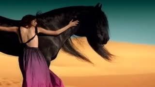 New Arabic remix song
