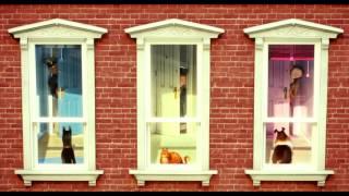 Смотреть мультфильм Тайная жизнь домашних животных в HD трейлер