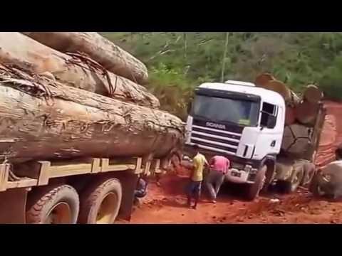 DANGEROUS BIGGEST Wood TRUCKER Off Road Accident   SUPER TRUCK Wood Working