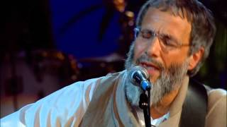 Yusuf Islam(Cat Stevens) - Father & Son (Porchester Hall, London 2007)