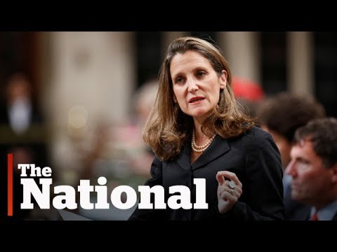 Foreign affairs minister delivers speech on Canada's foreign policy