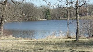 Water Clarity Coming to Golden Lake