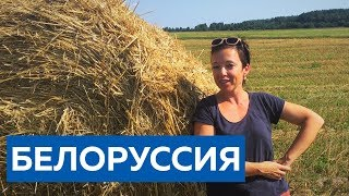 По дорогам Белоруссии и свадьба в Минске