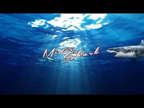 Mister Shark Speed Art Background