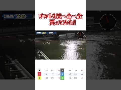 【競艇】チルト3度→全→全買ってみた!【ボートレース】#Shorts