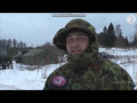 US troops swimming in Estonian ice