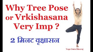 Tree Pose | Vrksasana | 2 Minutes Yoga Calm Inside for Beginners