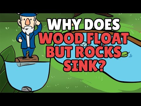 Why Does Wood Float But Rocks Sink? | Objects That Float And Sink In Water