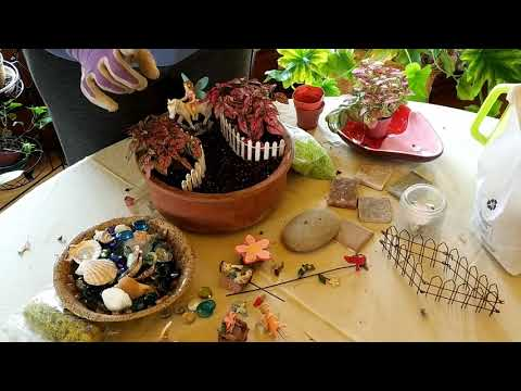 How To Plant An Indoor Fairy Garden