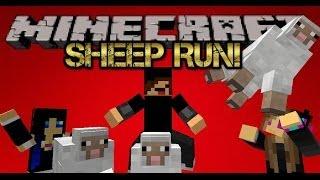 "Minecraft Minigame - Sheep Run! ""I AM THE SHEEP KING!"""