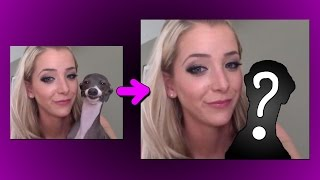 FIXING JENNA MARBLES  GARBAGE DOGS