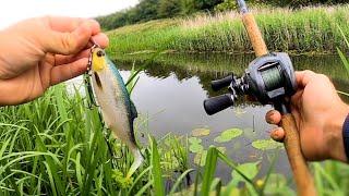 Drain Fishing For Pike new fishing spot