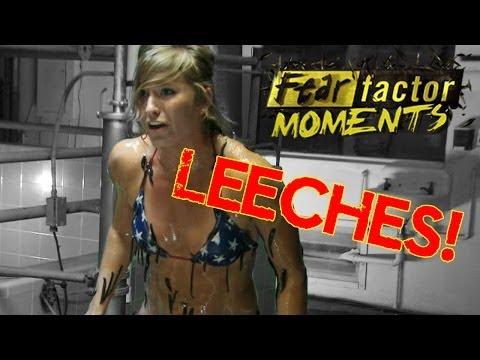 Fear Factor Moments   Sucking Leeches