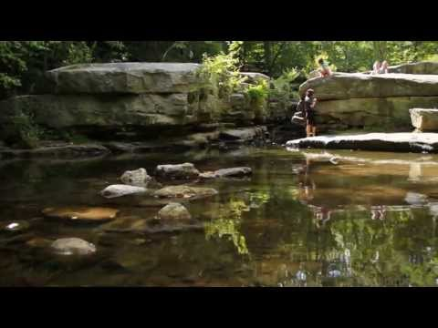 Mohonk Preserve official video