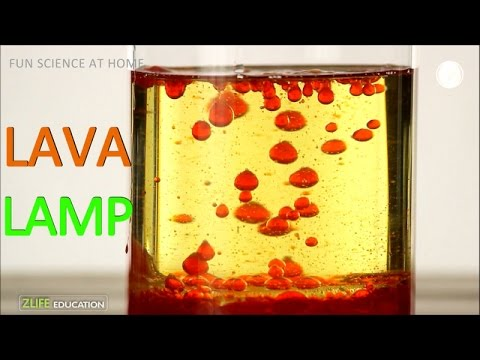 Home Made Lava Lamp : Science Experiment for Kids with Oil and Water ...