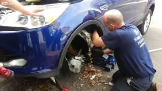 Mulher Leva Carro ao Mecânico e Tem uma Surpresa thumbnail